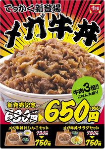 メガ牛丼.jpg